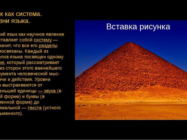 Язык как система. Уровни языка. Русский язык как научное явление представляет...