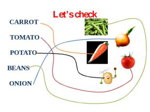 Let's check CARROT TOMATO POTATO BEANS ONION