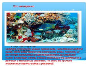 Актуализация знаний. Средняя плотность живых организмов, населяющих водную ср