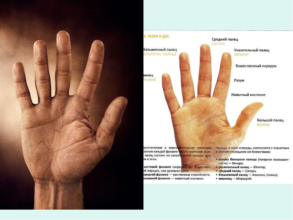 безымянный палец правой руки фото девушек очереди трахнули
