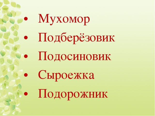 Мухомор Подберёзовик Подосиновик Сыроежка Подорожник