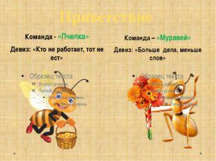 Приветствие Команда - «Пчелка» Девиз: «Кто не работает, тот не ест» Команда –