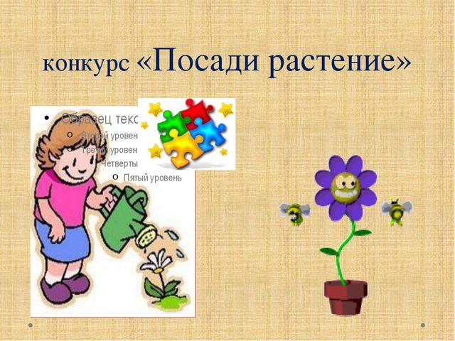 конкурс «Посади растение»