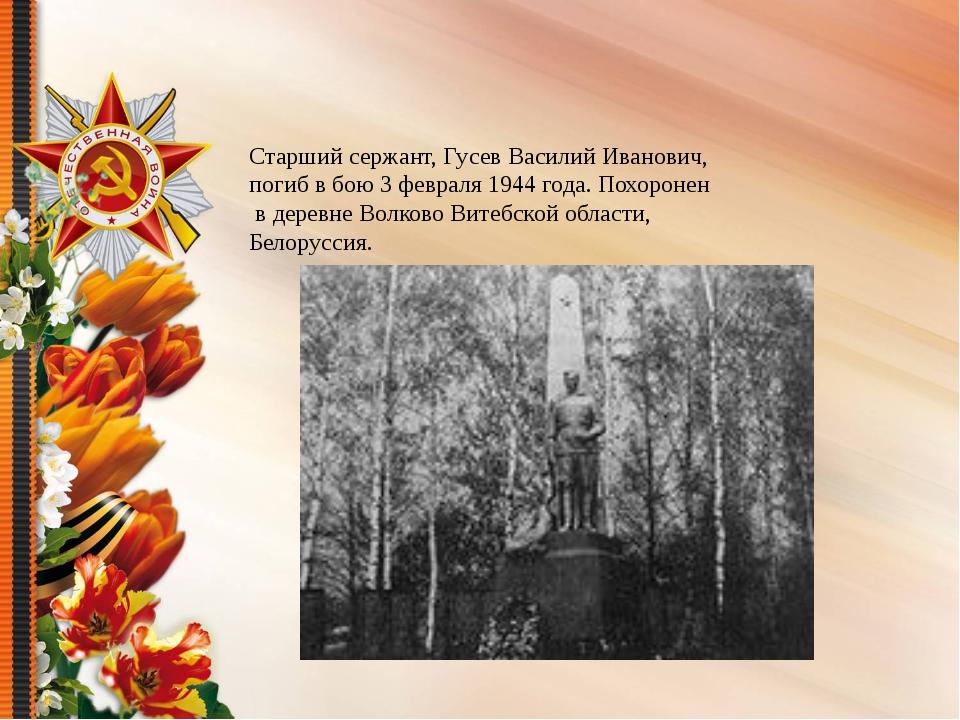 Старший сержант, Гусев Василий Иванович, погиб в бою 3 февраля 1944 года. По...