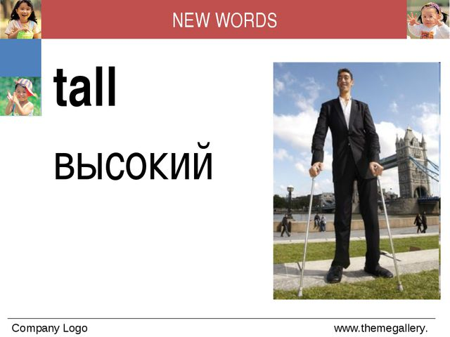 NEW WORDS tall высокий