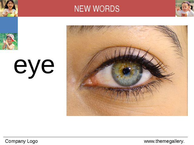 eye NEW WORDS