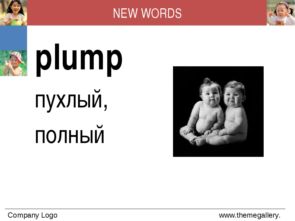 NEW WORDS plump пухлый, полный