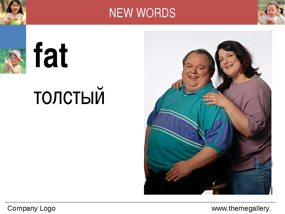 NEW WORDS fat толстый