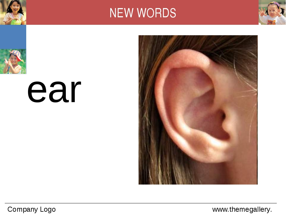 ear NEW WORDS