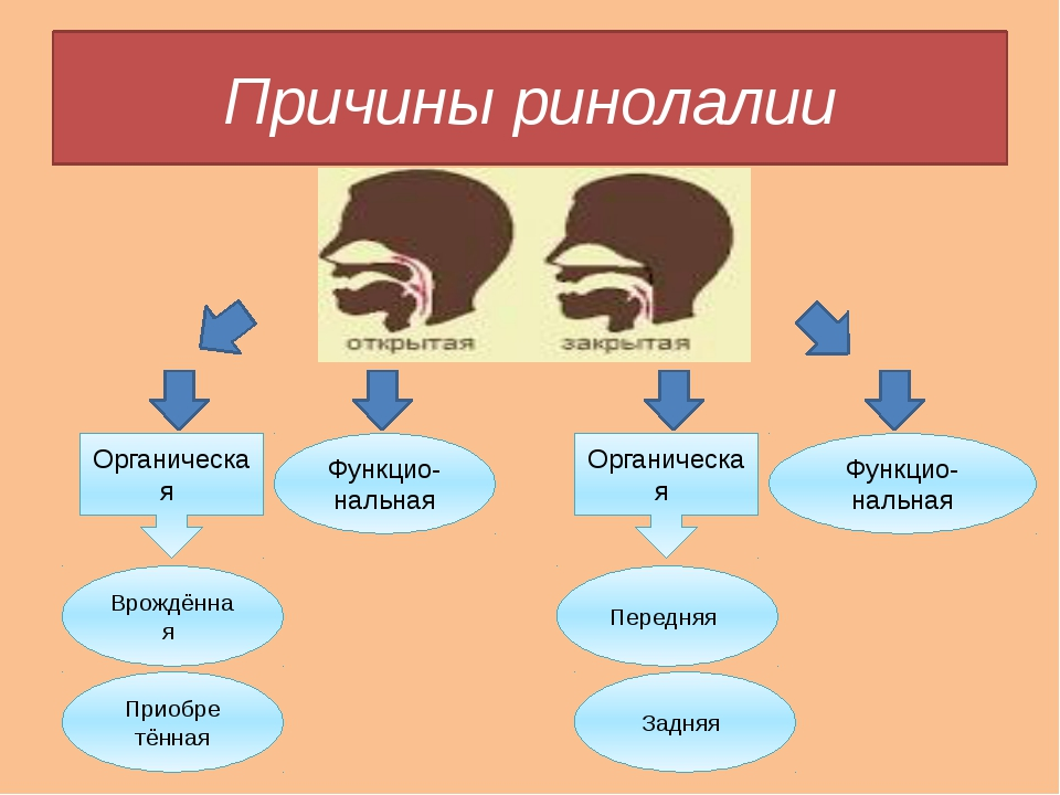 Причины ринолалии Органическая Органическая Функцио-нальная Функцио-нальная В...