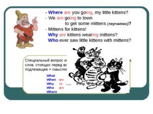 Специальный вопрос образуется при помощи специальных слов, стоящих перед вспо