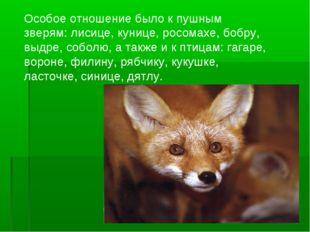 Особое отношение было к пушным зверям: лисице, кунице, росомахе, бобру, выдре