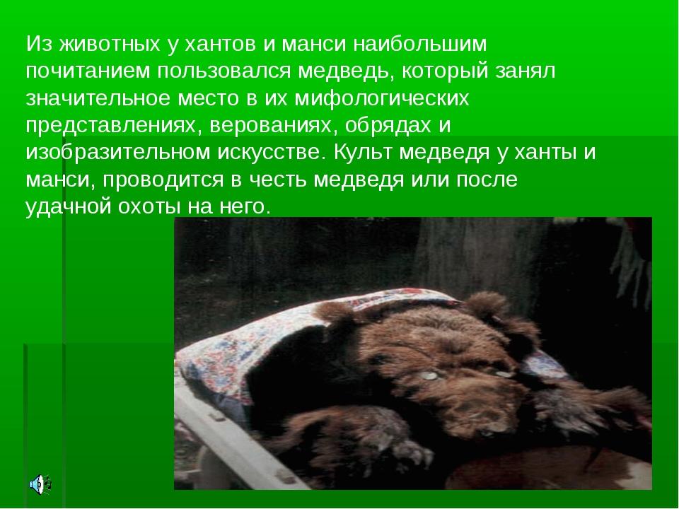 Из животных у хантов и манси наибольшим почитанием пользовался медведь, котор...