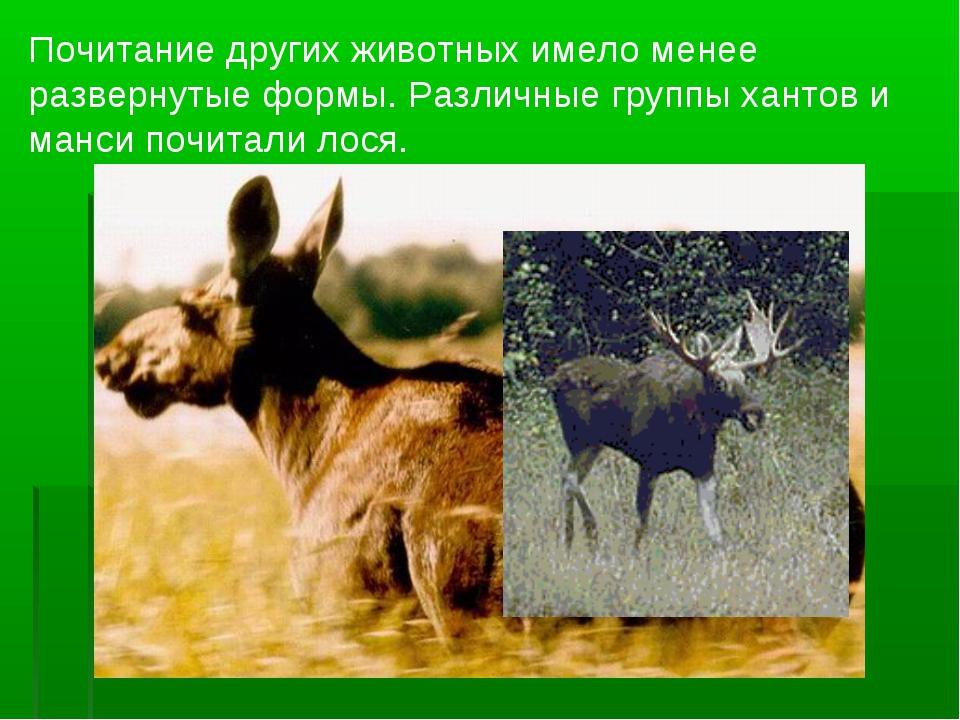 Почитание других животных имело менее развернутые формы. Различные группы хан...