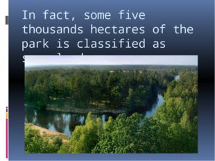 In fact, some five thousands hectares of the park is classified as swampland.