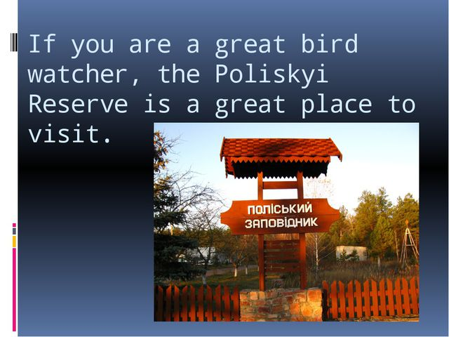 If you are a great bird watcher, the Poliskyi Reserve is a great place to vis...