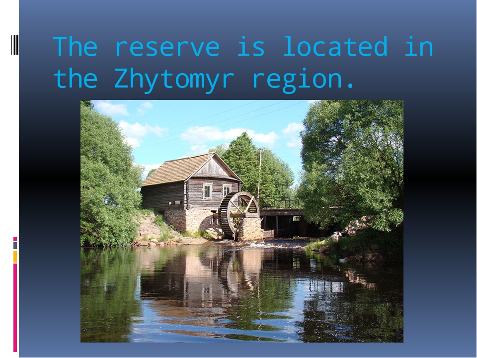 The reserve is located in the Zhytomyr region.