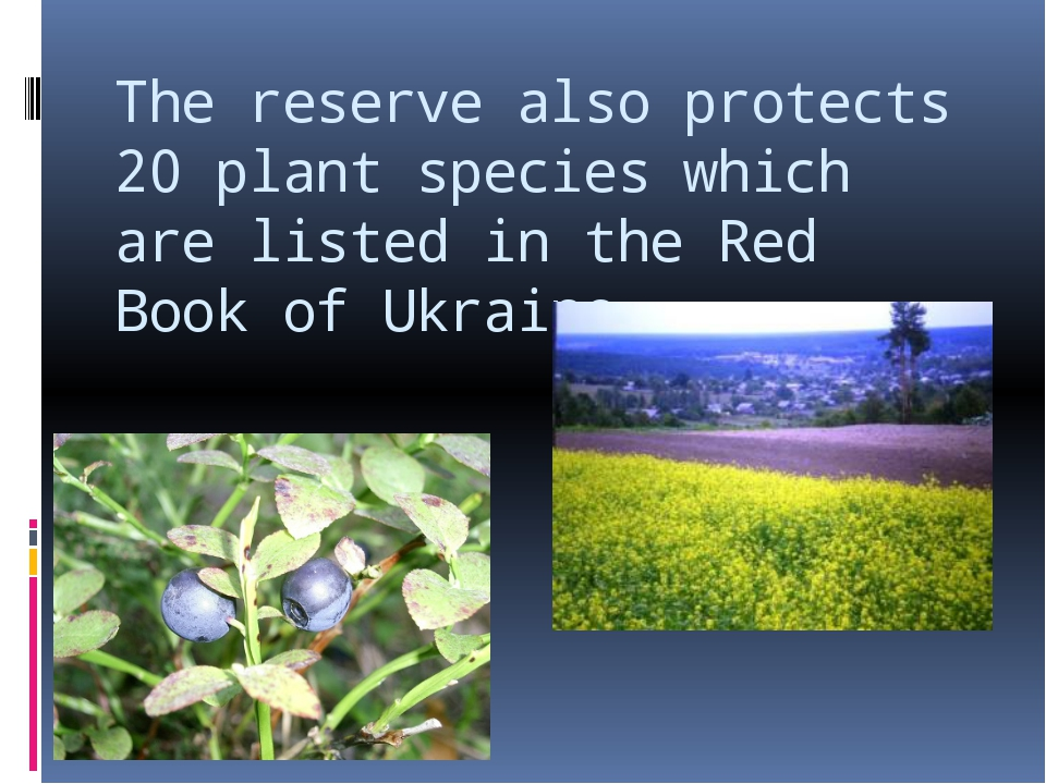 The reserve also protects 20 plant species which are listed in the Red Book o...