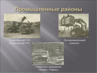 Коршуновский ГОК Рудногорский ГОК Лесопромышленный комплекс Совместное предпр