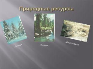 Минеральные Лесные Водные