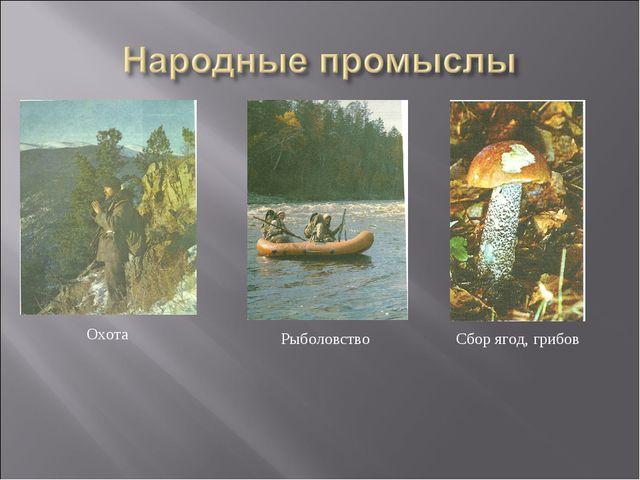 Охота Рыболовство Сбор ягод, грибов