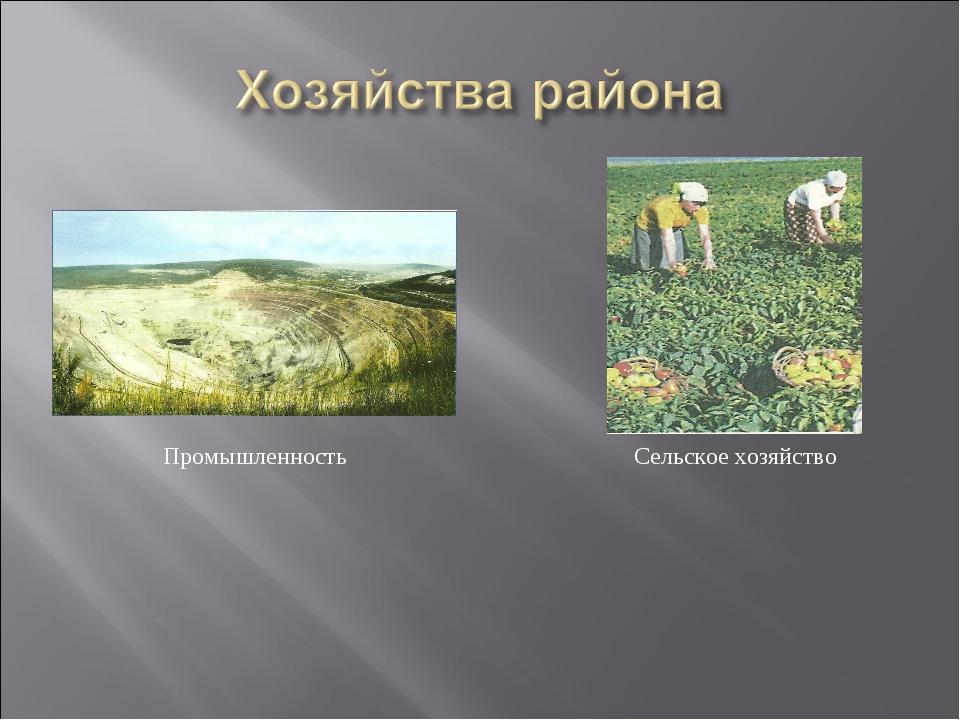 Промышленность Сельское хозяйство
