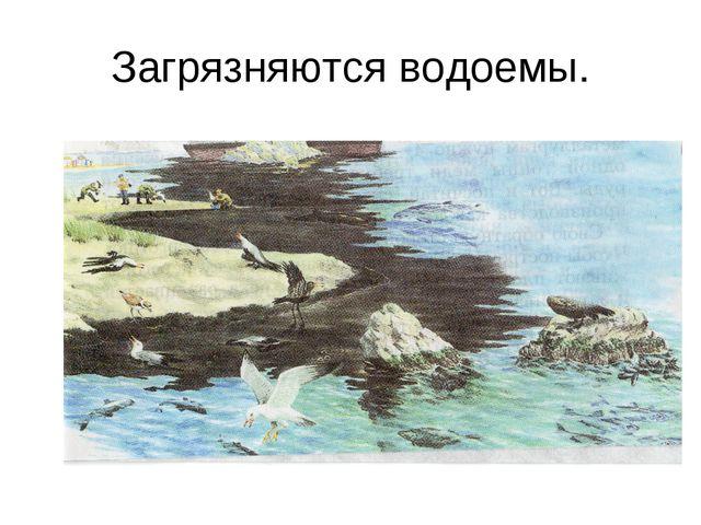 Загрязняются водоемы.