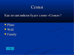 Семья Как по-английски будет слово «Семья»? Plane Wall Family