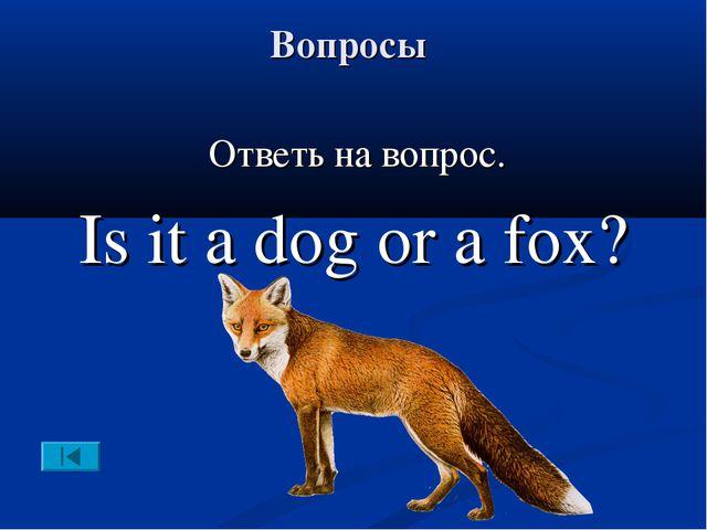 Вопросы Ответь на вопрос. Is it a dog or a fox?
