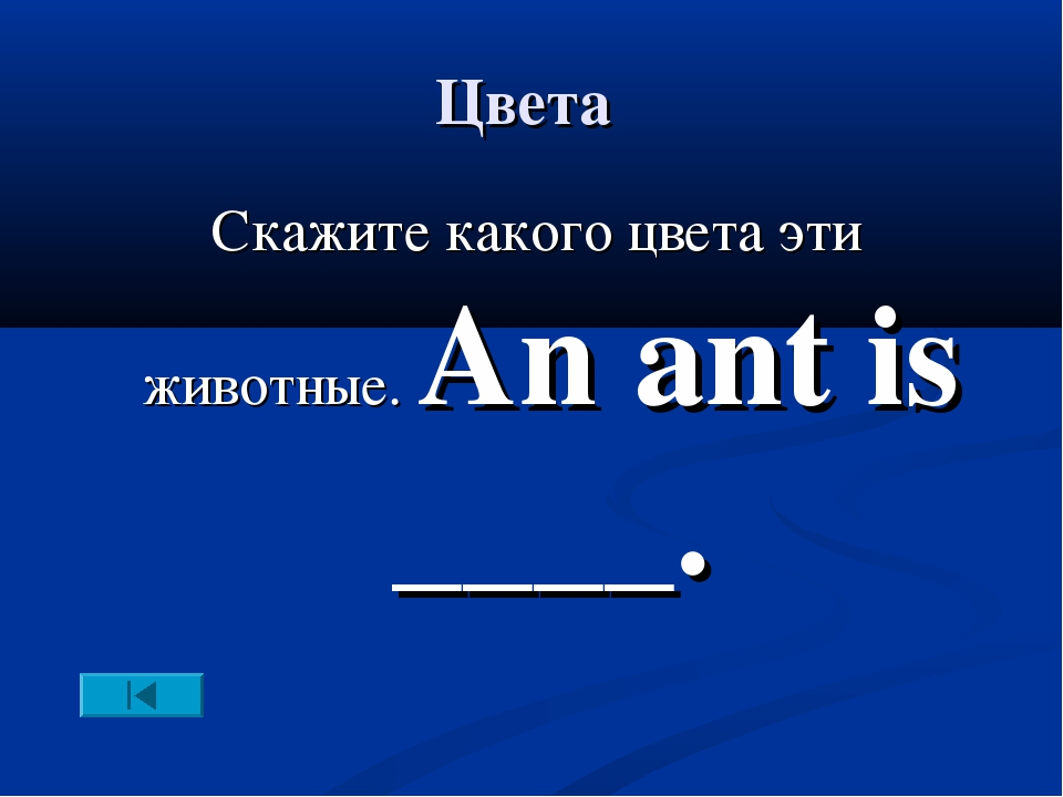 Цвета Скажите какого цвета эти животные. An ant is ____.