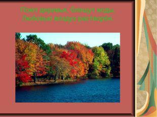 Поют деревья, блещут воды, Любовью воздух растворён.