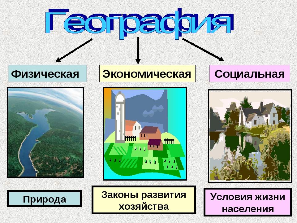 Физическая Экономическая Социальная Законы развития хозяйства Условия жизни н...