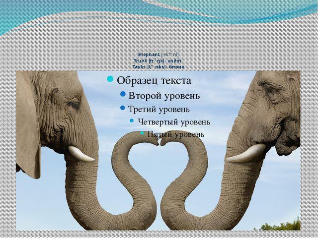 Elephant ['elifənt] Trunk |trʌŋk|- хобот Tasks |tɑːsks|- бивни