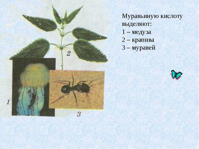 Муравьиную кислоту выделяют: 1 – медуза 2 – крапива 3 – муравей