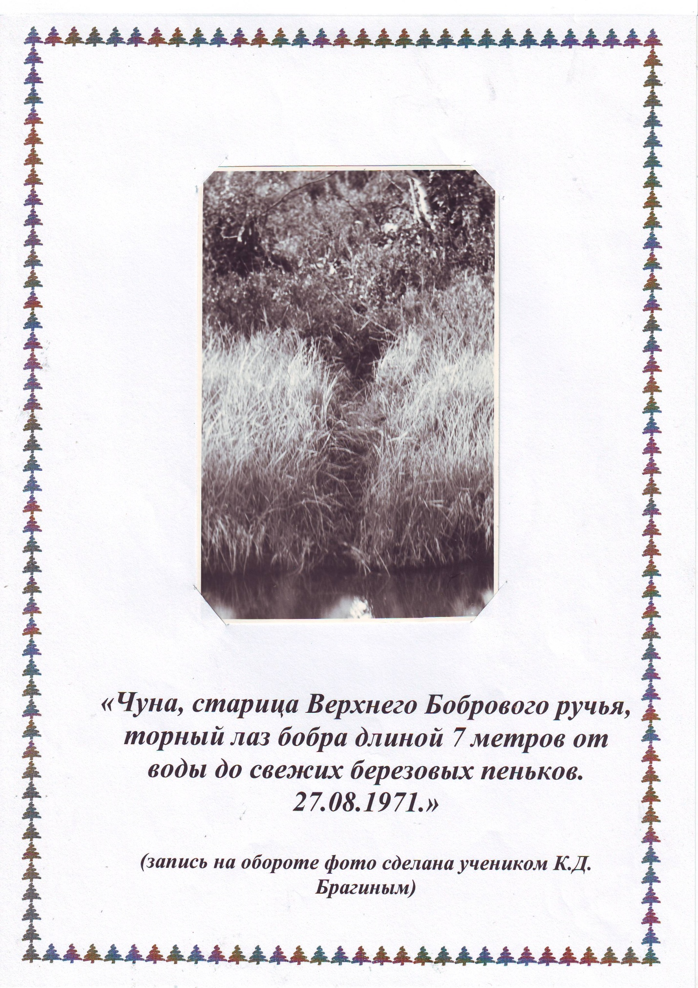 H:\Конкурсы\К.Д. Янковский\Янковский\Image0002.JPG