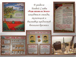 В разделе Боевой Славы «Ради жизни на Земле» находятся стенды, экспозиция и в