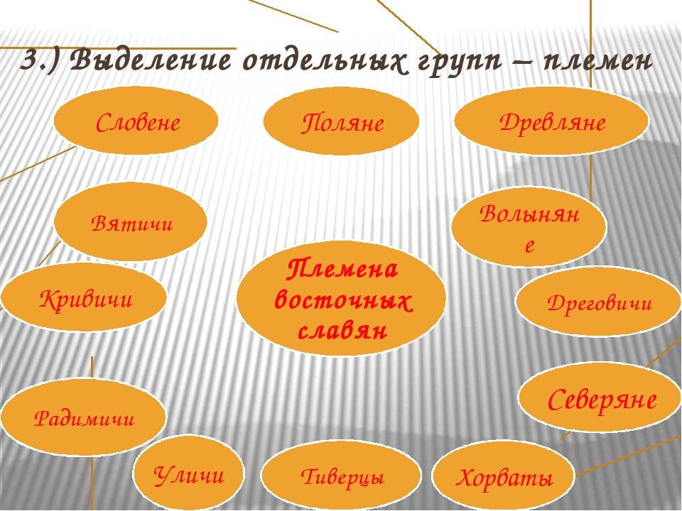 3.) Выделение отдельных групп – племен