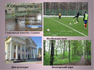 Спортивный комплекс стадиона Футбольное поле Дом культуры Косогорский парк
