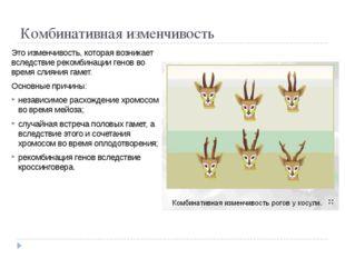 Комбинативная изменчивость Это изменчивость, которая возникает вследствие рек