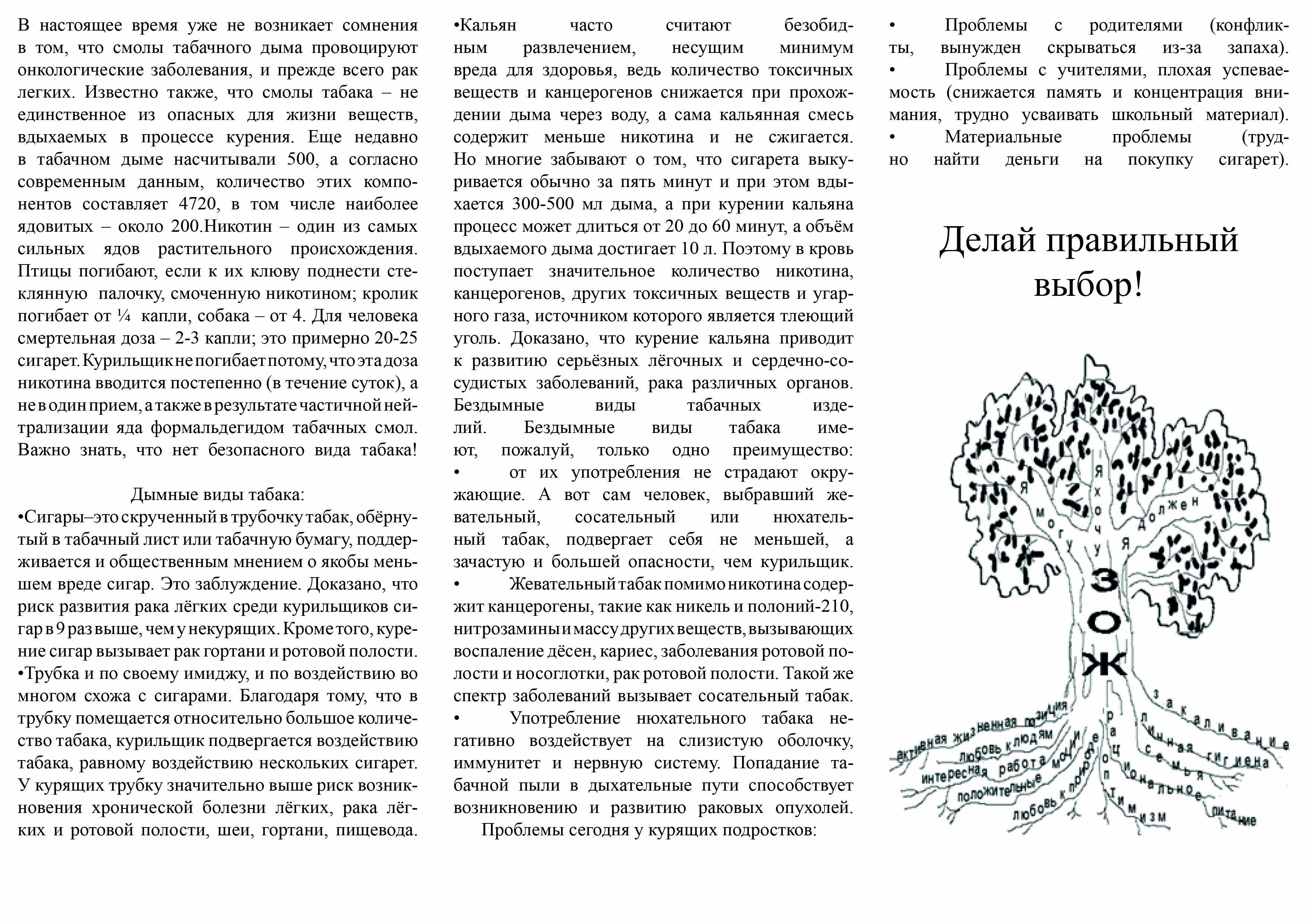C:\Documents and Settings\user2pc\Рабочий стол\С чата\Ходакова Юлия Сергеевна\буклет2.jpg