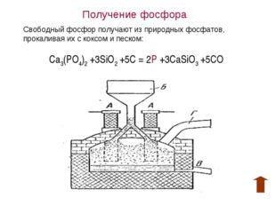 Получение фосфора Свободный фосфор получают из природных фосфатов, прокаливая