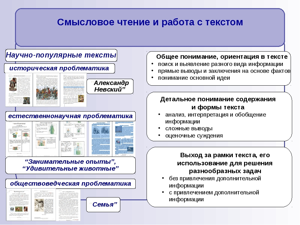 Общее понимание, ориентация в тексте поиск и выявление разного вида информац...