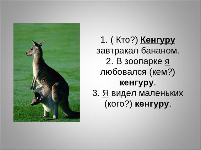 1. ( Кто?) Кенгуру завтракал бананом. 2. В зоопарке я любовался (кем?) кенгур...