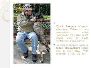 Юрий Антонов обожает животных. Сейчас в его загородном доме проживают 16 соб