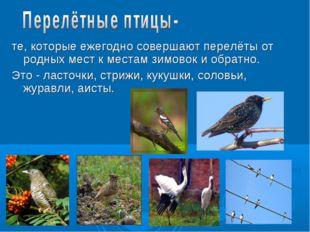 те, которые ежегодно совершают перелёты от родных мест к местам зимовок и об