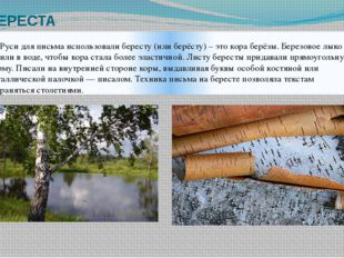 БЕРЕСТА На Руси для письма использовали бересту (или берёсту) – это кора берё
