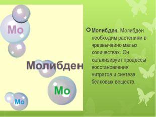 Молибден. Молибден необходим растениям в чрезвычайно малых количествах. Он ка