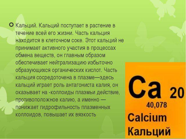 Кальций. Кальций поступает в растение в течение всей его жизни. Часть кальция...