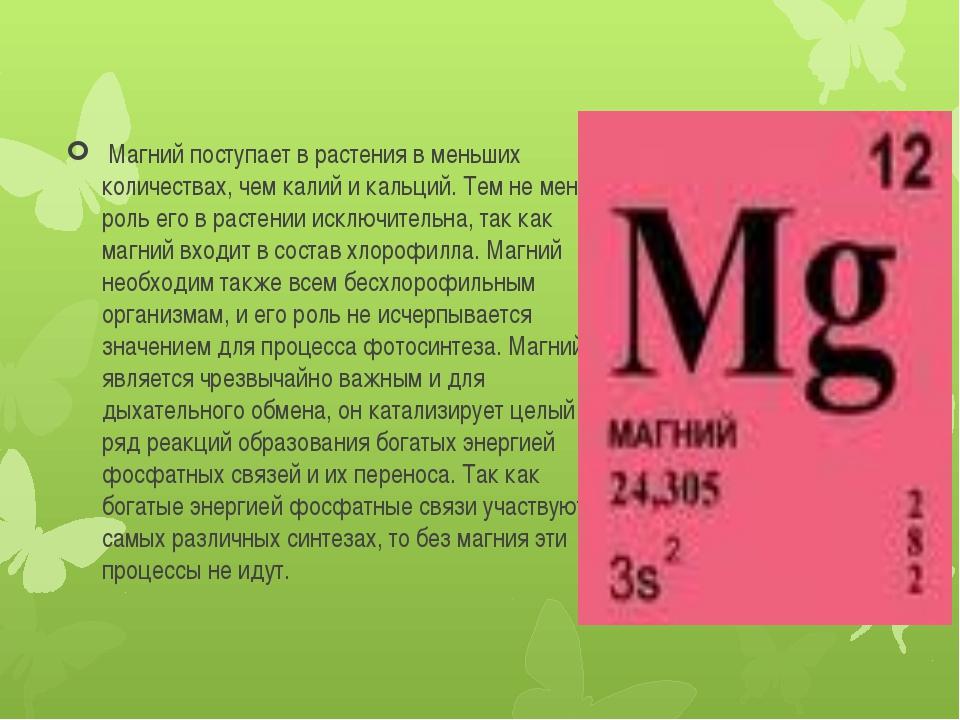 Магний поступает в растения в меньших количествах, чем калий и кальций. Тем...