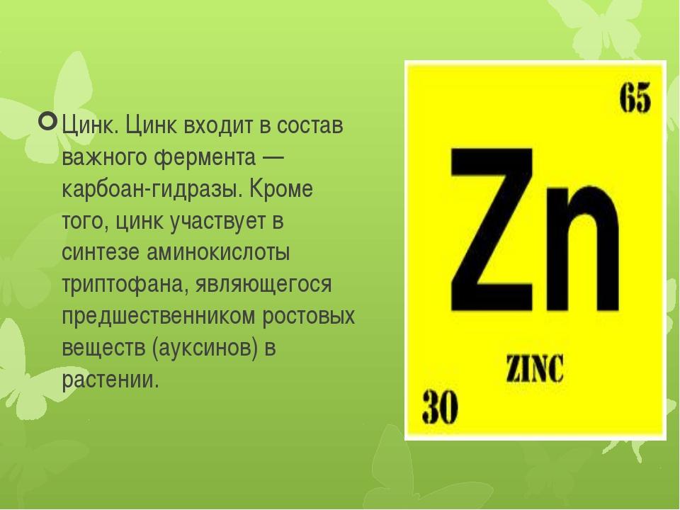 Цинк. Цинк входит в состав важного фермента —карбоан-гидразы. Кроме того, цин...